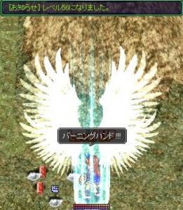 20070413133511.jpg