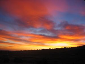 morningsky 2