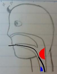 sdfnalsdjfgblase (1)