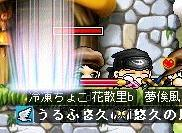 Maple000048.jpg
