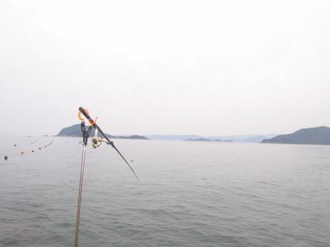 ほろ苦いアオリイカ釣り 001