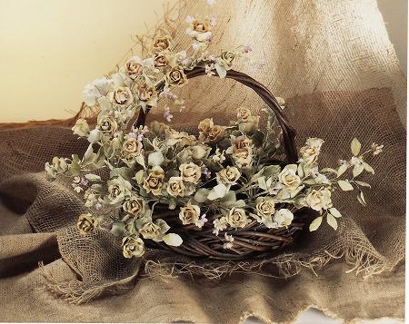 ビロードのバラ