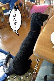 軽井沢観光2(4)