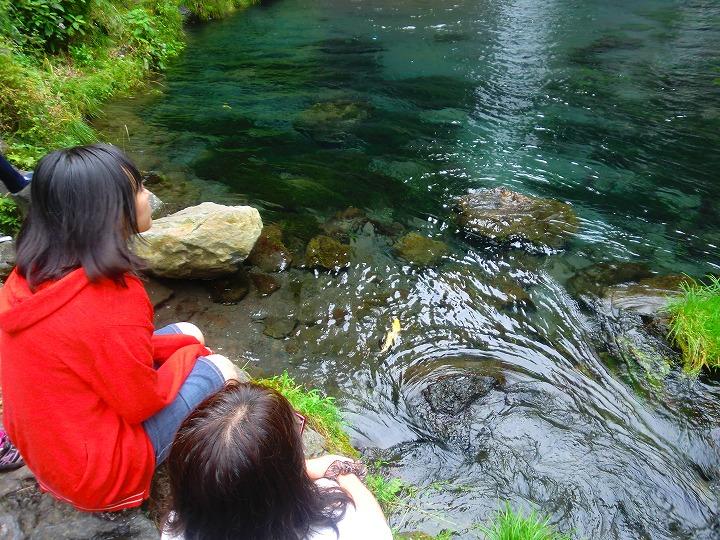 白糸滝12