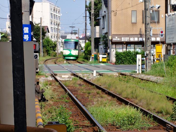 東急世田谷12