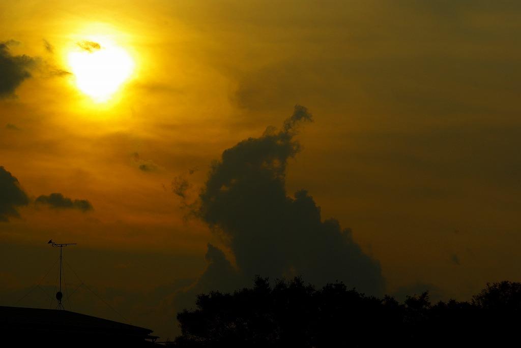 多摩川夕陽01