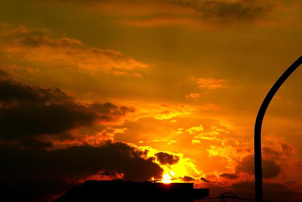 多摩川夕陽05