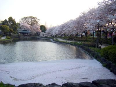 2009_04_10-2.jpg