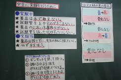 2008_10_21_005.jpg