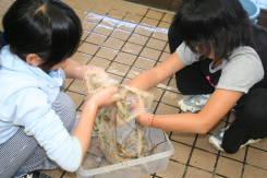 2008_11_13_010.jpg