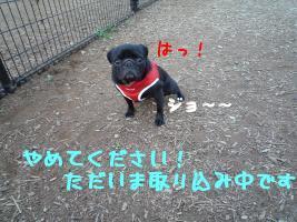 mOxsMuxn.jpg