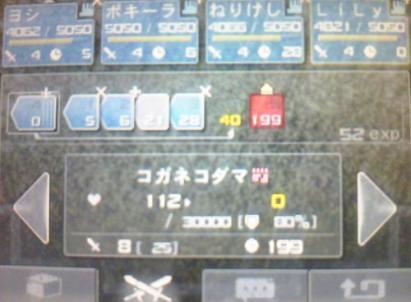 コガネ撃退時の組み合わせ_R