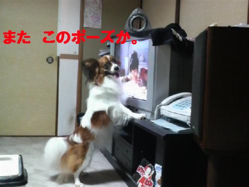 テレビとアクセル