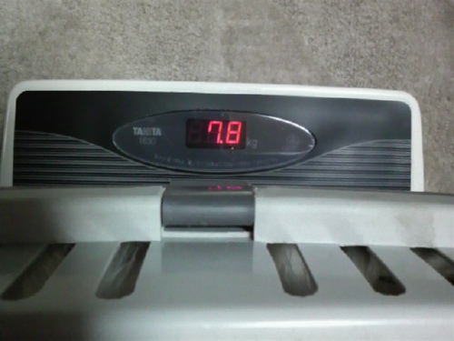 アクセル体重