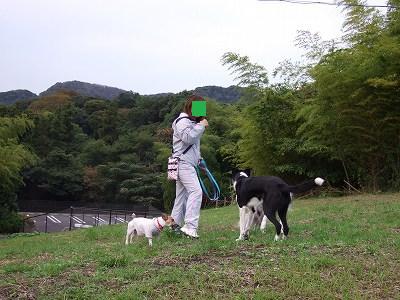 a-2008_10270068.jpg