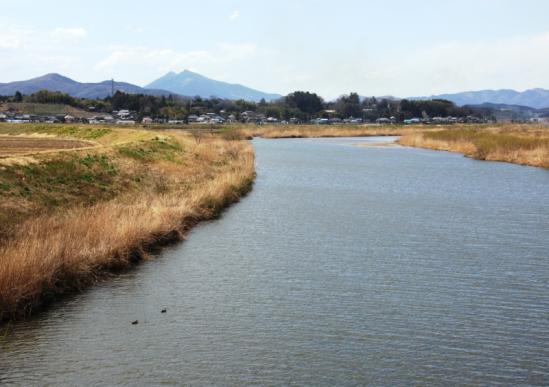KOISEGAWA01.jpg
