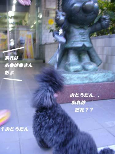 3-P1210773.jpg