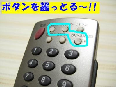 IMG_2560.jpg
