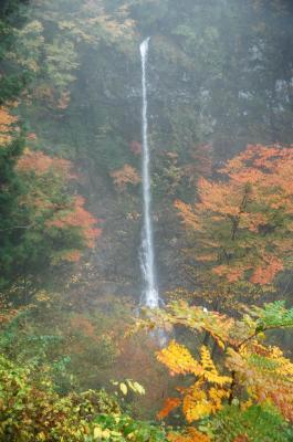 5昇龍の滝