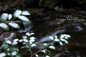 5白糸の滝DSC_03820001