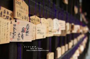 3護国神社_09580001
