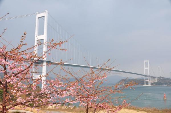 1糸山_04280001