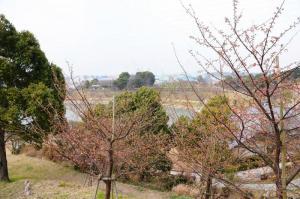 5藤山_04120001