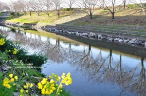 7赤坂泉_0921_074