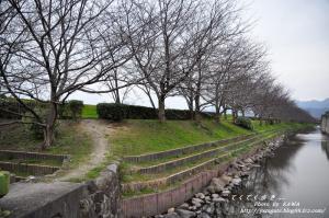 1赤坂_1546_211