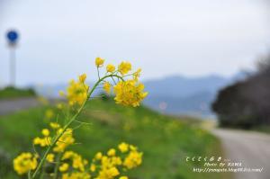7赤坂_1550_213