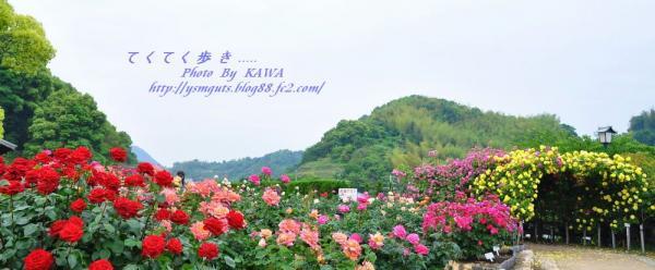 11かわら館_6602