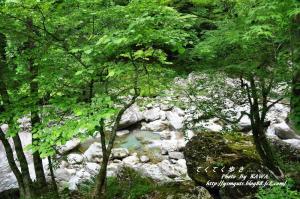 7瀬戸川_7986