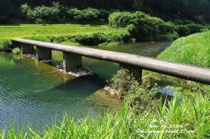 6高樋橋09.07.18