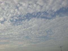 2009071101.jpg