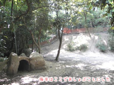 稲荷山ドッグラン魔のトンネル