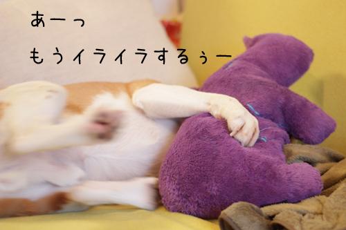 0531オレ様はレモンビーグル1