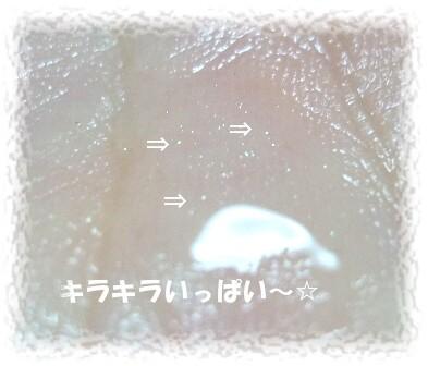 P1090113.jpg