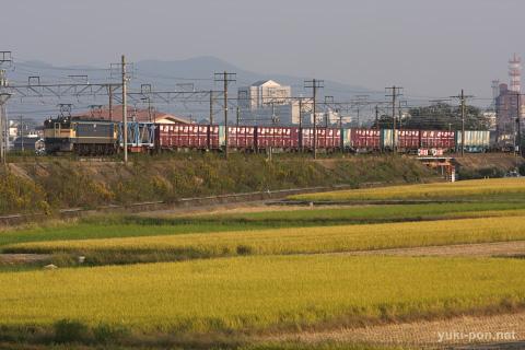 EF65PF+コキ貨物@豊橋~西小坂井