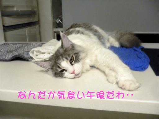 gumiheijousin1.jpg