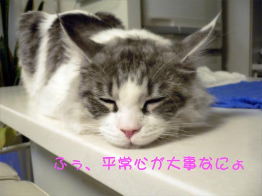 gumiheijousin6.jpg