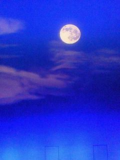 大川の月夜