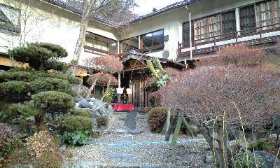 清風桜 お庭