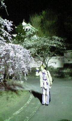 大垣城と枝垂れ桜とゆうま