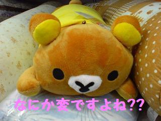 間違い探し@しまむー-1