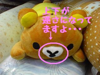 間違い探し@しまむー-2