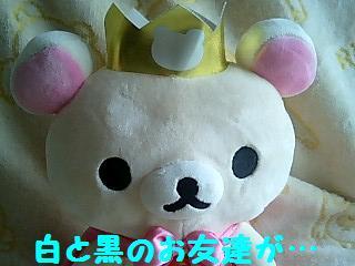 5thぬいるみBIG★コリちゃんのお友達★-4