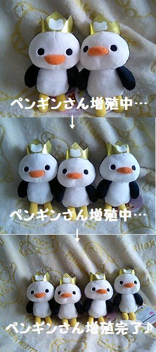 5thぬいるみBIG★コリちゃんのお友達★-6