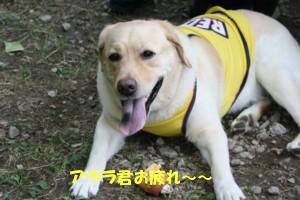 コピー ~ 8・27プチオフ会 in 香恋の里 062