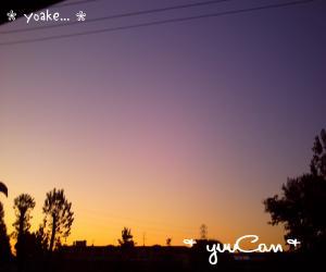 081113yoake_convert_20081113192513.jpg