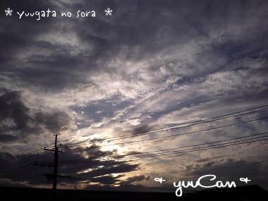 08.10.10夕焼け01